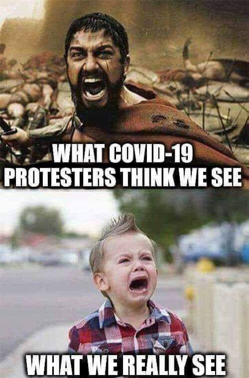 what covid protesters think we see